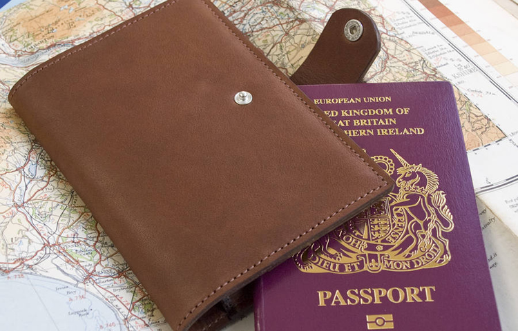 Top 5 Best Travel Document Holders
