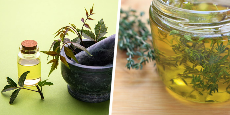 Neem and Thyme Oil