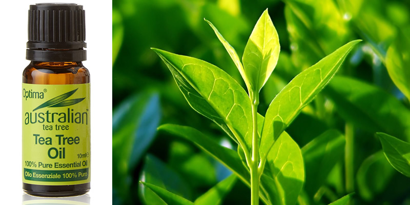Optima Australian Tea Tree Oil