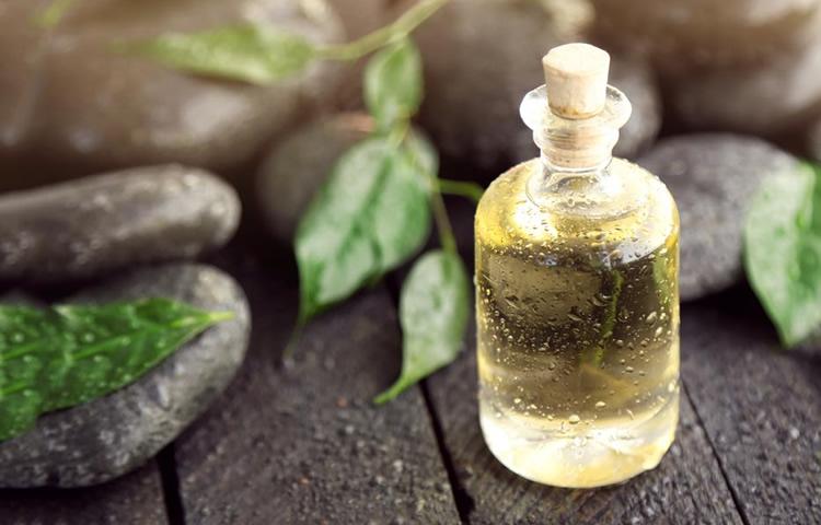 Top 5 Best Tea Tree Oils