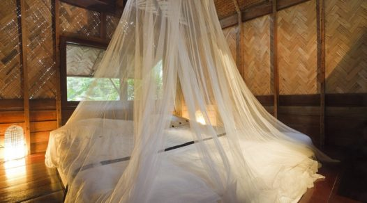 Top 5 Best Travel Mosquito Nets Reviewed